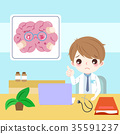 doctor with brain 35591237