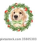 dog, animal, christmas 35605303