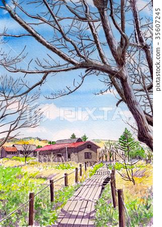 水彩畫Yajimagahara濕地 35607245