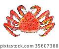 红王蟹 水彩画 水彩 35607388