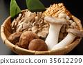 버섯 모듬 35612299