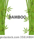 Creative vector illustration of chinese bamboo 35614864
