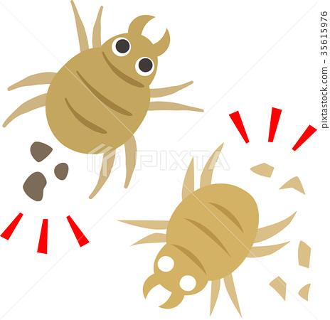 蜱蟲和蟎蟲,匈奴 35615976