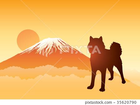 Mount Fuji dog Asahi 35620790