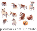 JackRussel terier dog collection hand drawing 35629465