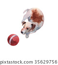 JackRussel terier dog puppy hand drawing 35629756