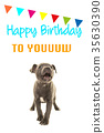 Birthday card 35630390