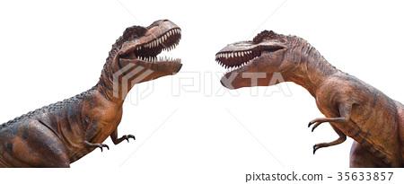 Tyrannosaurus rex are fighting . 35633857