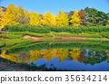 ทัศนียภาพ,ภูมิทัศน์,ธรรมชาติ 35634214