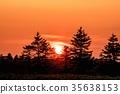 日落 夕阳 树 35638153