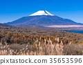 ภูเขาฟูจิ,ภูเขาไฟฟูจิ,ฤดูใบไม้ร่วง 35653596