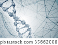 3d illustration of DNA molecule model from water. 35662008