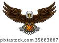 eagle, vector, bird 35663667