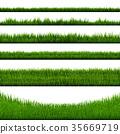 綠色 綠 青草 35669719