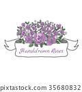 Flower ribbon of rose. 35680832