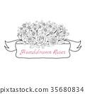 Flower ribbon of rose. 35680834
