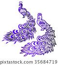 動物 禽 鳥兒 35684719