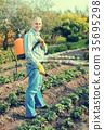 男性 男人 植物 35695298
