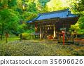 shrine, maple, yellow 35696626