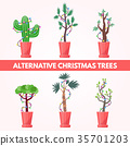 set of New Year plants 35701203