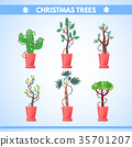 set of New Year plants 35701207
