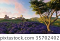 Lavender fields with a solitary tree 3d rendering 35702402