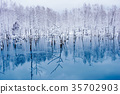 ฤดูหนาว,หิมะ,แหล่งน้ำ 35702903