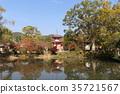 푸른, 불교, 잎 35721567