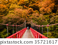 Red bridge, Dakigaeri Valley Senboku, Akita, Japan 35721617