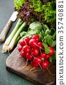 Large bunch of fresh raw radish 35740881