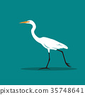 Vector of Heron or egret design. 35748641