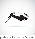 Vector of stork flying on white background. Stork 35748642