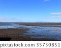 木更津市 海洋 海 35750851