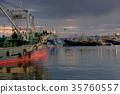 渔港 早晨 清晨 35760557