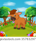 Cartoon happy bull smile in the farm 35763297