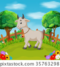Cartoon happy goat smile in the farm 35763298