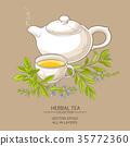 sage tea illustration 35772360