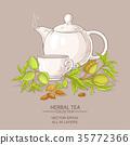 almond, vector, tea 35772366