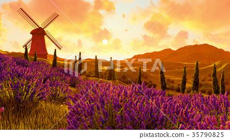 Lavender fields landscape 3d rendering 35790825