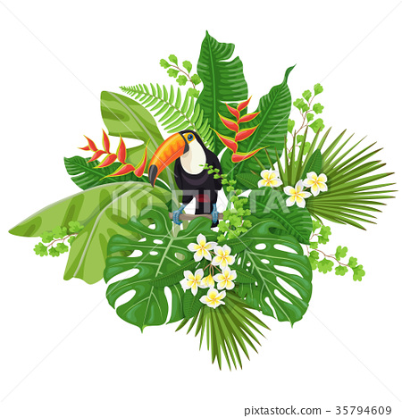 Toucan and Tropical Plants 35794609