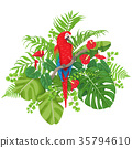 Red Macaw and Tropical Plants 35794610
