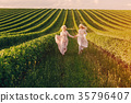 twins in the field 35796407