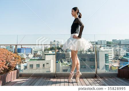 Ballerina 35828995