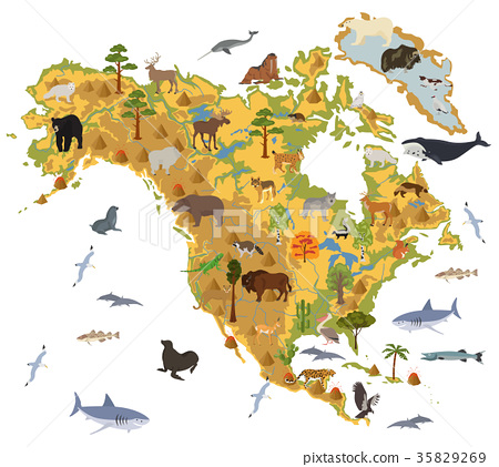 North America flora and fauna map, flat elements 35829269