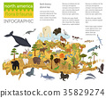 Isometric 3d North America flora and fauna map  35829274