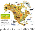 North America flora and fauna map, flat elements 35829287