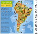 South, America, animal 35829291