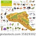 South, America, animal 35829302