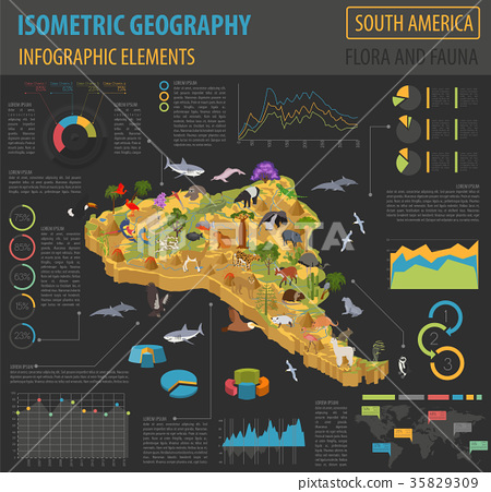 Isometric 3d South America flora and fauna map  35829309