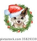dog, animal, hat 35829339